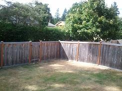 Barren backyard